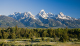 Meadow and Tetons