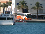Bus Circuito