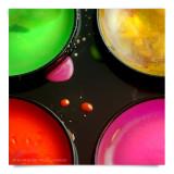 Color1+.jpg