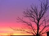 Dawn skyline - March 19-2007