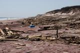 debris on the beach