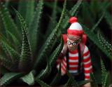 Where is Waldo??