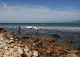 Fishing in Montauk Surf