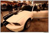 500 GT