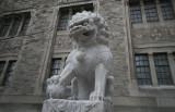 LionROM7933.jpg