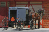 Horse and buggy51901.jpg