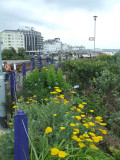 Eastbourne,the Wish Tower gardens
