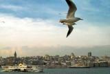 istanbul_03033.jpg