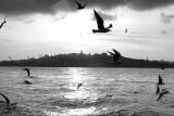 istanbul_7468.JPG