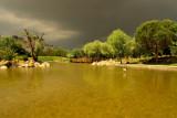 After the Rain at Bahcesehir.jpeg