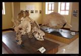 Pre-historic armadillo, outside Cusco