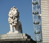 Westminster Bridge Lion