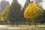 D2x2006-11-01_007.jpg
