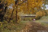 D2x2006-11-06_075.jpg