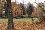 D2x2006-11-10_010.jpg