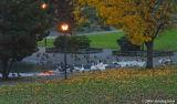 D200-2006-11-10_019.jpg