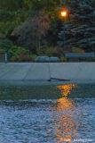 D200-2006-11-10_027.jpg