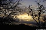 D2x2006-12-10_118.jpg