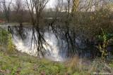 Some light on Delta Ponds