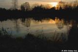 Morning light at Delta Ponds