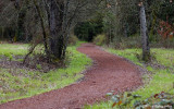 The Pre Trail