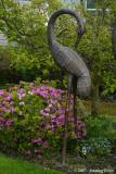 D200-2007-04-18_007.jpg