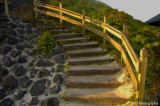 Stairs of gold