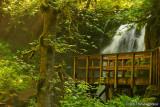 Majestic Falls viewpoint