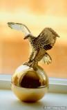 Avon Gold eagle in sunlight