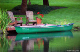 Boat and little Green Heron