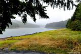 Rainy Day at Fall Creek Lake