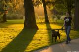 Beautiful evening for a walk