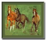 frisky horses