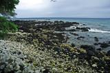 Black and White Stone Beach