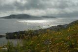 Bauline East , Avalon. The mists of Avalon