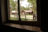 View through the window....dead flies on the windowsill...