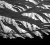 abstract 2 greyscale