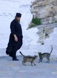 Monk and cats, amorgos is.