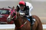 cooma races05 race2.jpg