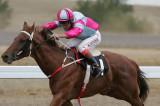 cooma races07 race3.jpg