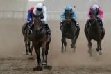 cooma races09 race4.jpg