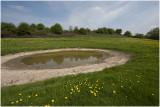 amfibie-poel in het landschap