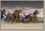 Harness Racing, Buffalo,NY