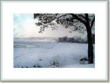Upper Niagara Rapids