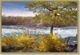 Upper Rapids