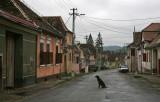 Village Biertan