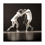 Ballet_KBVV_31okt06_WW2M2171.jpg