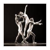 Ballet_KBVV_31okt06_WW2M2201.jpg