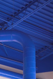 Blue Ducts