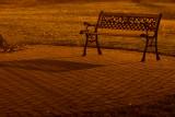 Park Bench Under the Street Light